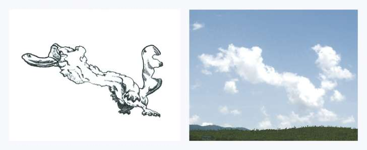 Tincho4_Long Neck Platypus cloud